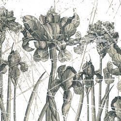 Herbarium | Wall art / Murals | Wall&decò