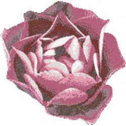 Rosa Rosa mosaic | Mosaïques en verre | Bisazza