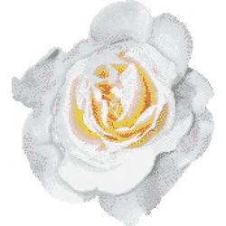 Rosa Bianca mosaic | Mosaicos | Bisazza