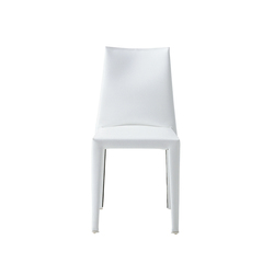 Dab Chair | Restaurant chairs | Enrico Pellizzoni