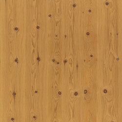 ELEMENTs Stone Pine aged | Wood panels | Admonter