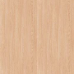 Altmuehl Beech | Wood panels / Wood fibre panels | Pfleiderer