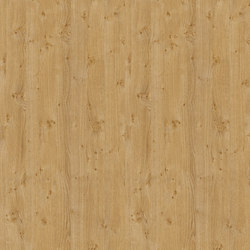 Pippy Oak | Wood panels / Wood fibre panels | Pfleiderer