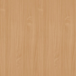 Natural Beech | Wood panels | Pfleiderer