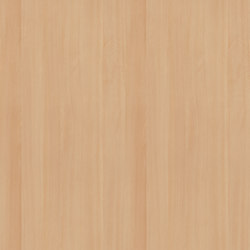 White Beech | Wood panels | Pfleiderer