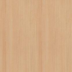 White Beech | Wood panels / Wood fibre panels | Pfleiderer