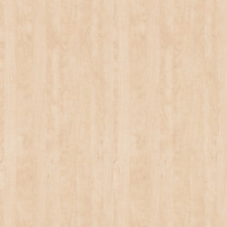 Bleached wild Pear | Wood panels / Wood fibre panels | Pfleiderer