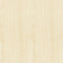 Light Maple | Panels | Pfleiderer