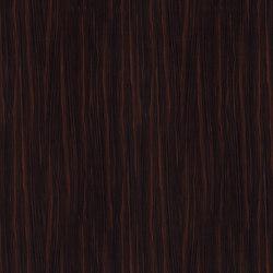 Macassar Ebony | Pannelli in legno / derivati dal legno | Pfleiderer
