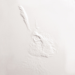 Frescata Graustufenfräsung | Panneaux matières minérales | Hasenkopf
