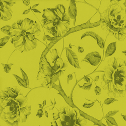 Adagio Pistacho | Wall coverings / wallpapers | Equipo DRT