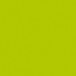 Parapan® 5440 Kiwi | Lastre | Hasenkopf