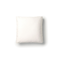 boutique chameleon pause Pillow | Kissen | moooi