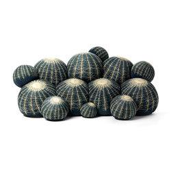 Canapé Cactus sofa | Canapés | Baleri Italia by Hub Design