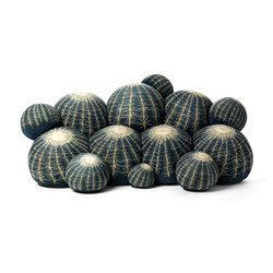 Canapé Cactus sofa | Sofás | Baleri Italia