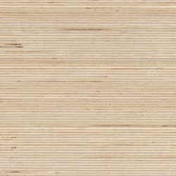 Plexwood - Birke | Wood panels / Wood fibre panels | Plexwood