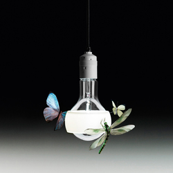 Johnny B. Butterfly | General lighting | Ingo Maurer