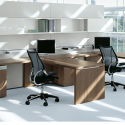 P2_Group | Executive Office | Desking systems | Bene
