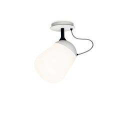 Hippo Ceiling / Wall lamp | Ceiling lights | Vertigo Bird