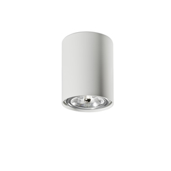 Naked C | Ceiling lamp | General lighting | Vertigo Bird