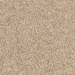 Viola 8C34 | Carpet rolls / Wall-to-wall carpets | Vorwerk