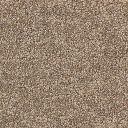 Viola 7A20 | Wall-to-wall carpets | Vorwerk