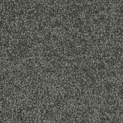 Viola 4B67 | Wall-to-wall carpets | Vorwerk