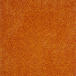 Topissimo Simple orange | Tapis / Tapis design | Nanimarquina