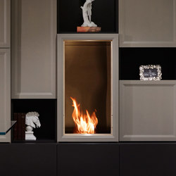 Firebox 450SS | Fireplace inserts | EcoSmart™ Fire