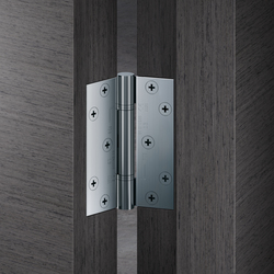 Door Hinge stainless Steel | Cerniere | FSB