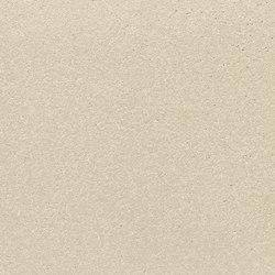fibreC Ferro FE sahara | Rivestimento di facciata | Rieder