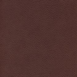 skai Sotega FLS mocca | Faux leather | Hornschuch