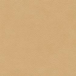 skai Sotega FLS camel | Faux leather | Hornschuch
