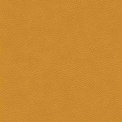 skai Sotega FLS flame | Faux leather | Hornschuch