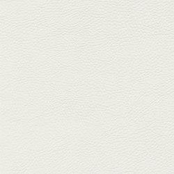 skai Sotega FLS white | Faux leather | Hornschuch
