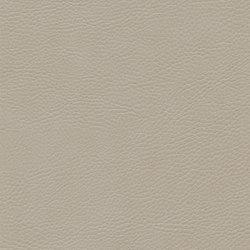 skai Sotega FLS birch | Faux leather | Hornschuch