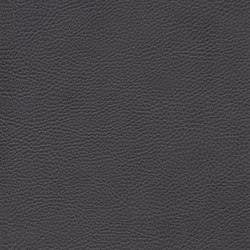 skai Sotega FLS dark grey | Faux leather | Hornschuch