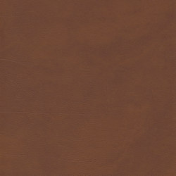 skai Palma NF inka | Kunstleder | Hornschuch