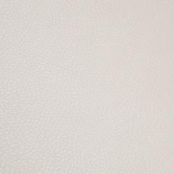 skai Parotega NF birke | Faux leather | Hornschuch