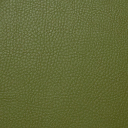 skai Parotega NF olivgrün | Faux leather | Hornschuch