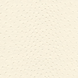 skai Soliena FLS beige | Faux leather | Hornschuch