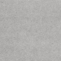 öko skin FE ferro ivory | Concrete panels | Rieder