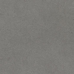 öko skin | FE ferro silvergrey | Concrete panels | Rieder