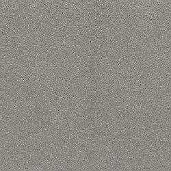 öko skin FL ferro silvergrey | Concrete panels | Rieder