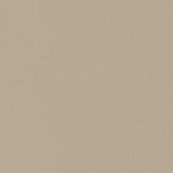 skai Folie für die Außenanwendung Silicia SFTN matt | Folien | Hornschuch