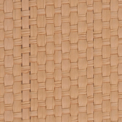 Nature Sense E-1170 | light brown | Tessuti per pareti | Naturtex