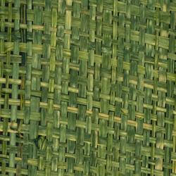 Nature Sense E-6127 | verde | Tissus muraux | Naturtex