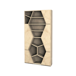 Lui 6 5619 Bookcase | Shelves | F.LLi BOFFI