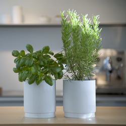 Herb pot | Maceteros | bulthaup