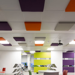 Abso pads | Ceiling systems | Texaa®